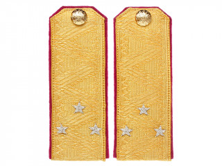 Lieutenant General Officers Army & Guards Rifle regiments shoulder boards straps Russia RIA WWI